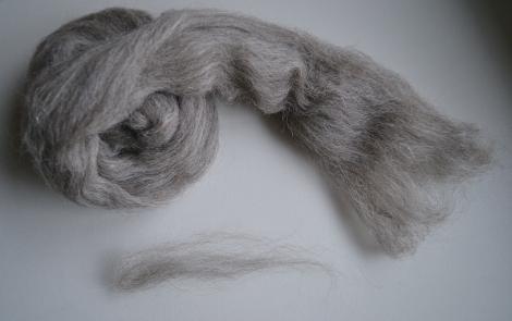 jacob grey staple length