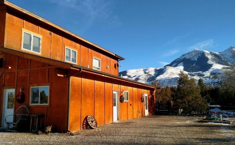 A Sheep Ranch & Our Weird, WeirdWorld