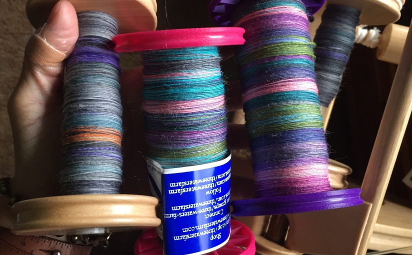 A Week of Spinzilla Snapshots