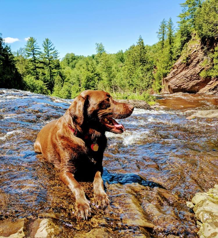 moose waterfall